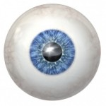 Physicians grow retinas from human blood-derived stem cells!