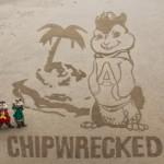Amazing Works of Art on Beaches!