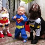 Dogs Dressed Up by Geeky Owners – 15 Pics!