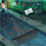 Nanotechnology for Clean Water – Infographic!