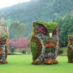 There are Incredible Work of Topiary Around The World – 10 Pics!