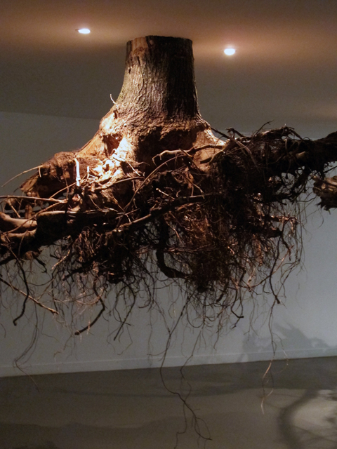 Brand new Tree Root Chandeliers 5 - Bloggedd BU47
